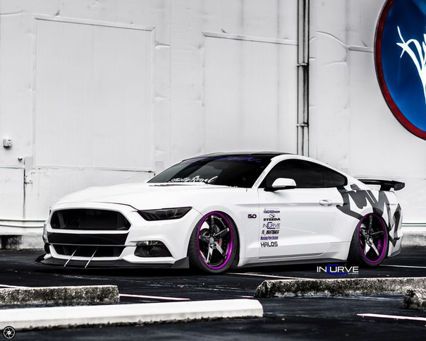 Ford Mustang GT on Incurve Forged IF-5 Wheels